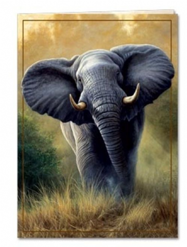 A Rare Friend Greeting Card | Tree-Free Greetings®